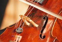 Violi viola i piano